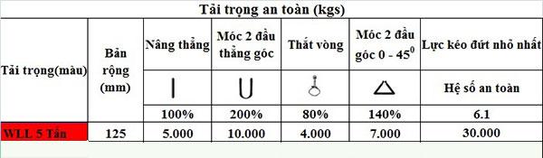 tai-trong-an-toan-cap-vai-5-tan